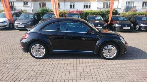 Volkswagen Beetle windows